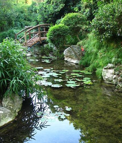 Zilker botanical garden isamu taniguchi japanese garden for Fish pond bridges