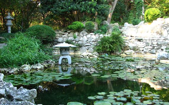 Exotic garden design for Japanese koi water garden