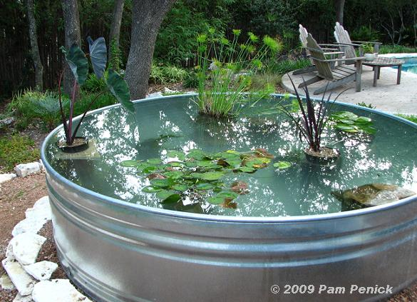 How To Make A Container Pond In A Stock Tank Diggingdigging