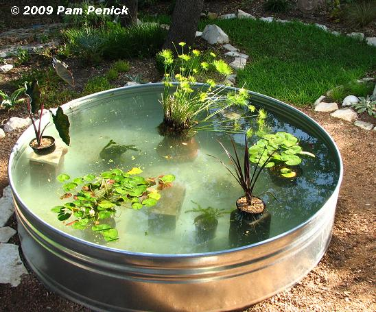 Above ground fish pond pics for How to build a koi pond cheap