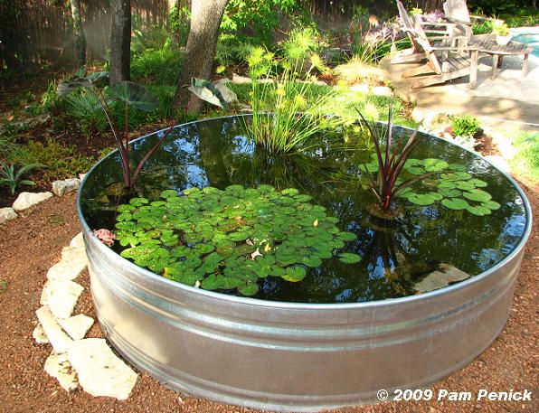 How to make a container pond in a stock tank digging for Container pond