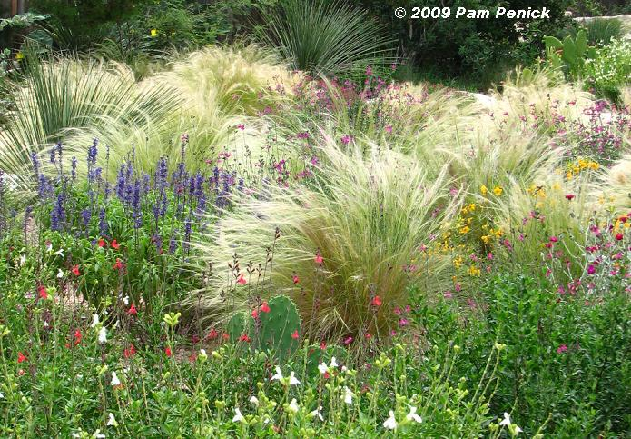 Ornamental designs texas for Ornamental grasses design plans