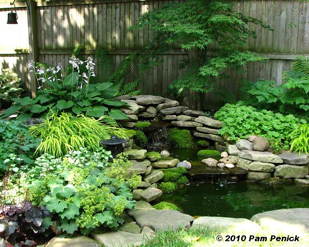 Small shade garden ideas photograph in another garden down for Pond shade ideas