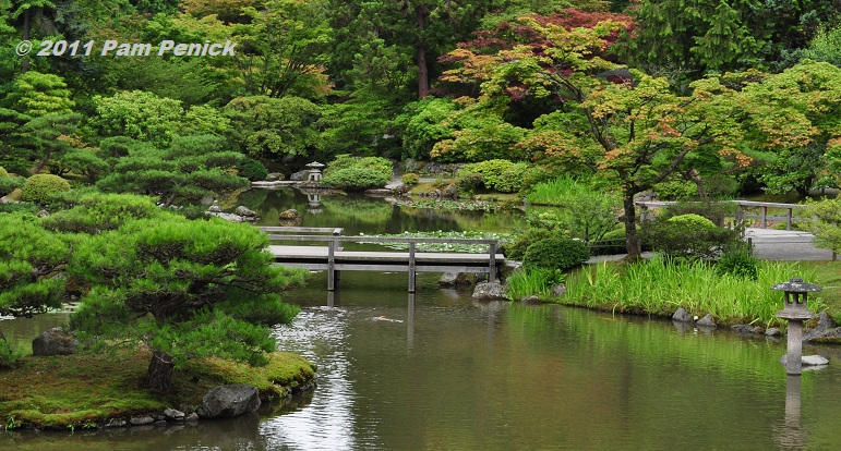 Seattle Japanese Garden: Seattle Japanese Garden, A Tranquil Oasis In The City