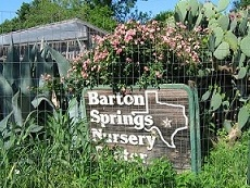 This Is My Favorite Nursery In Austin For Its Selection Of Native Perennials Quality Service And Prices Bsn Propagates A Lot Plants