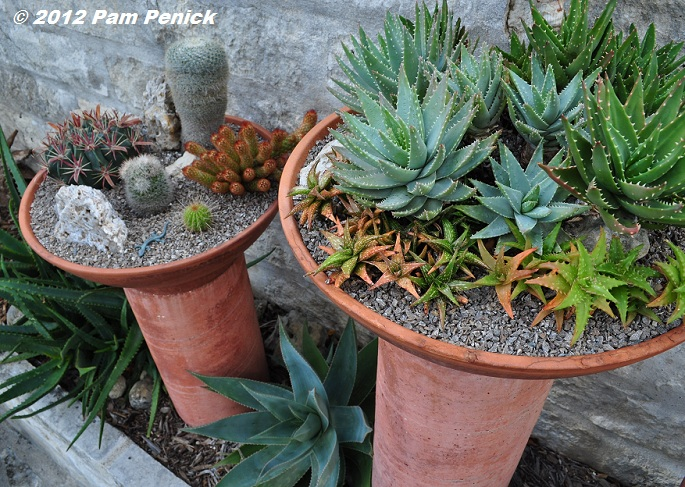 Austin open days tour 2012 garden of jeff pavlat and ray clayton diggingdigging - Dish garden containers ...