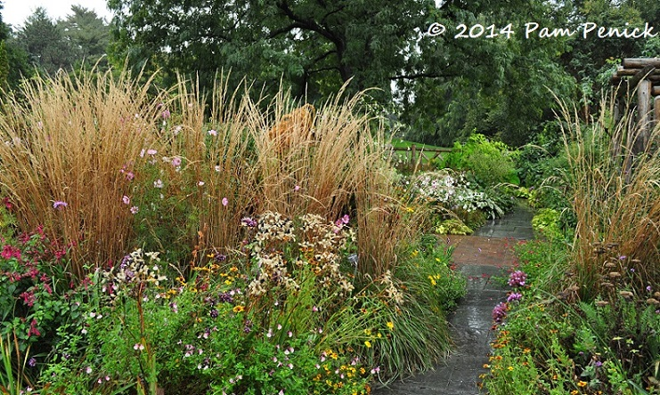 Visit to wave hill a hudson river estate garden in new for Tall ornamental grasses for screening