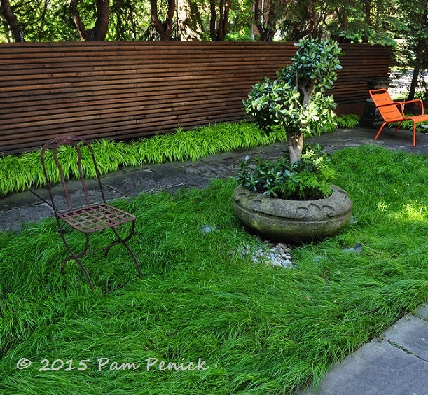 Simple Lines Big Impact In Forest Hill Contemporary Garden Toronto Garden Bloggers Fling Digging