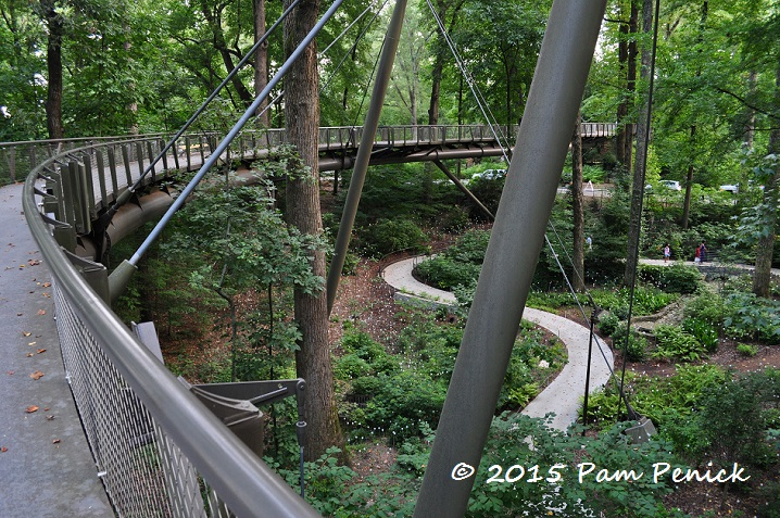 Munro Lights At Atlanta Botanical Garden And A Whale Of A
