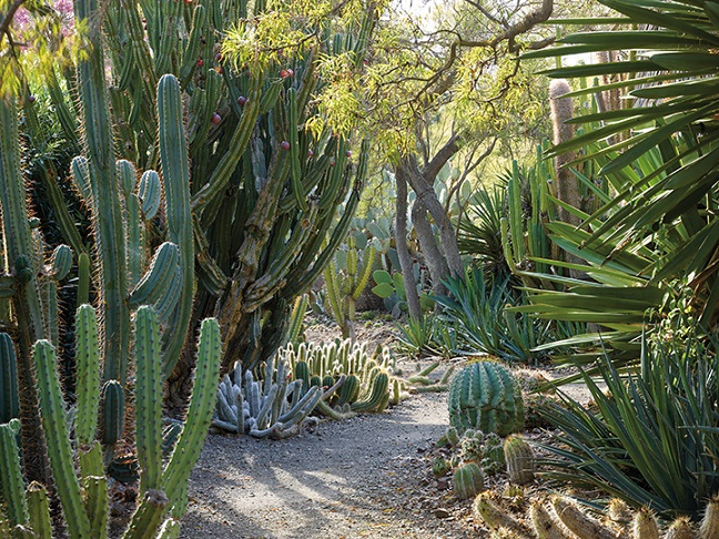 Read This Outstanding American Gardens DiggingDigging