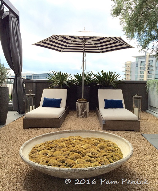 RH Austin Rooftop Garden Showcases Contemporary Outdoor Furniture |  DiggingDigging Ideas