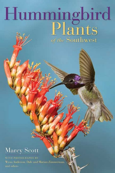 Read This Hummingbird Plants of the Southwest DiggingDigging
