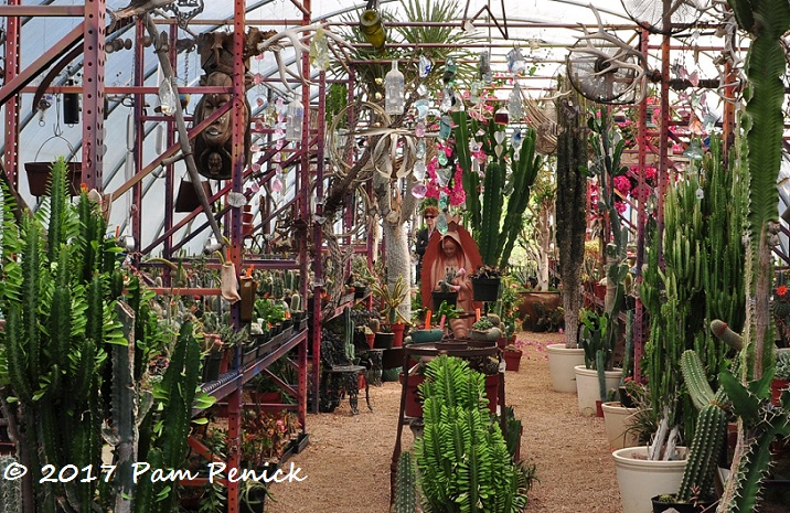 The Weird And Wonderful From Plants To Garden Art Can Be Found At Living Desert Ranch In Ewood Texas About 30 Miles Northwest Of Austin