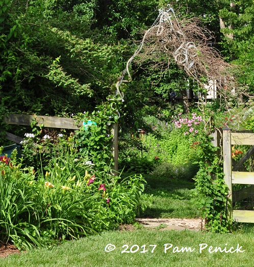 Tammy Welcomes Not Just Pollinators But Human Visitors With A Whimsical,  Ribbon Like Arbor Over Her Back Gate. I Didnu0027t Stop To See How She Made  This, ...