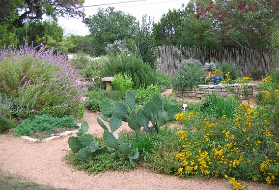 Support Your Independent Nursery Month: The Natural Gardener