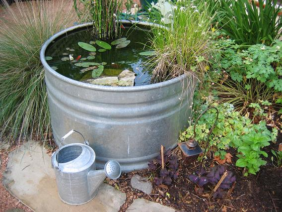 No bull cattle troughs make great containers digging for Fish suitable for small pond