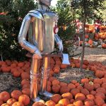 Tin Man from The Wizard of Oz in a pumpkin patch at Dallas Arboretum, October 2017