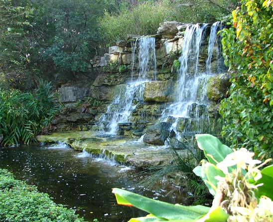 Zilker Botanical Garden: Hartman Prehistoric Garden
