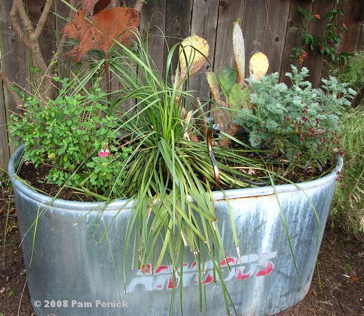 Incroyable Using Stock Tanks In The Garden