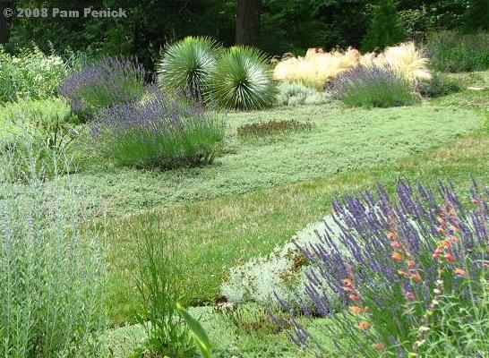 Among All The Beautiful, Bold, And Imaginative Gardens At Chanticleer, Why  Do I Like The Gravel Garden Best? It So Resembles The Dry Gardens Of West  Austin ...