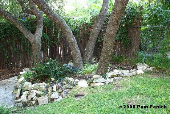 rocks and trees my new garden to be digging. Black Bedroom Furniture Sets. Home Design Ideas