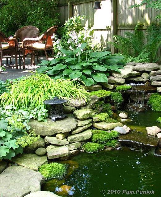 Lovely Lancaster Ave Gardens At Buffalo Garden Bloggers