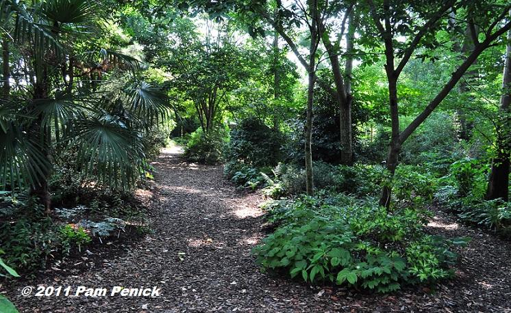Visit To Plant Delights Nursery Shade Bog Gardens