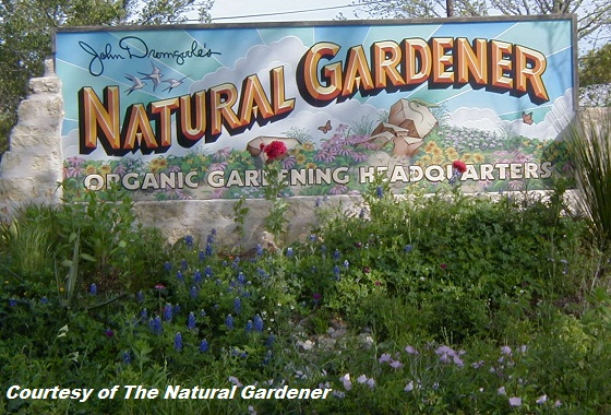 Support Your Independent Nursery Month: The Natural Gardener | Digging