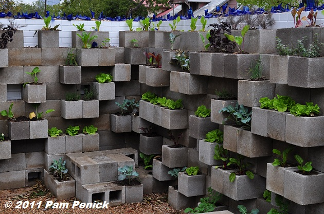 The Cinderblock Wall Planter Idea Just Keeps Getting Bigger And Better. At  Big Red Sunu0027s Recently Reopened Boutique Nursery In East Austin, I Spotted  This ...