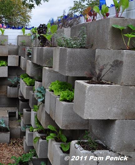Edible Wall Cinderblock Wall Vegetable Garden Wows At Big