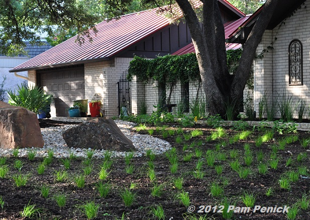 - Drive-By Gardens: Rockin' Alternative Lawns In North Austin - Digging