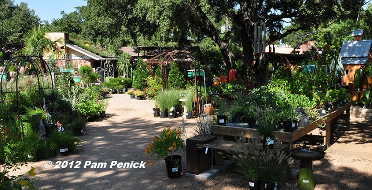 The Great Outdoors Is Located In South Austin Hippie Meets Hipster Zone Of Congress Avenue Just Downtown It Carries A Good Selection