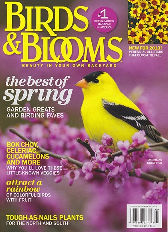 Image result for birds and blooms