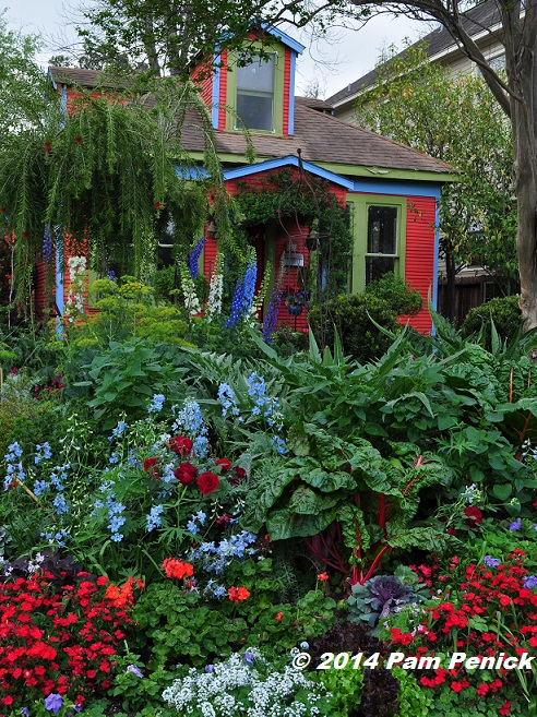 Drive-By Gardens: Cottage garden color explosion in Houston Heights ...