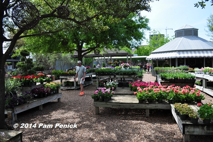 The Nursery Grounds Feel Surprisingly Large For Inner Houston But With A Limited Selection Of Plants This Is Not All Your Gardening Needs