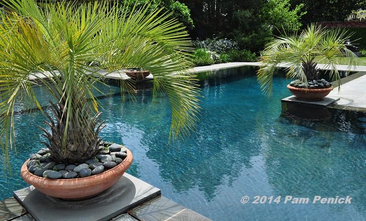 Houston Open Days Tour 2014 3640 Del Monte Drive Garden