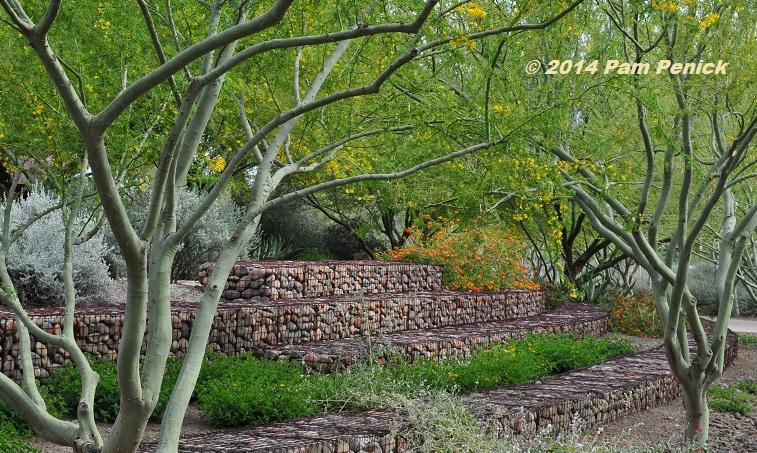 Xeriscape is not a zeroscape: Scottsdale Xeriscape Garden ...