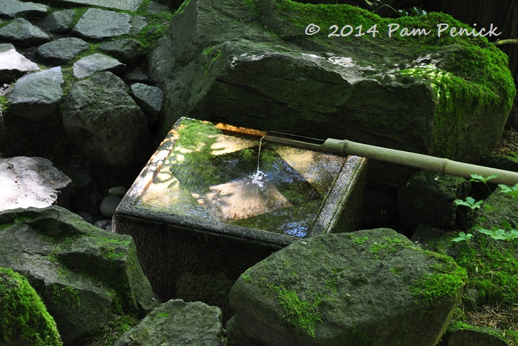 The Second Day Of The 7th Annual Garden Bloggers Fling, Held In Portland In  Mid July, Began In The Renowned Portland Japanese Garden, Often Described  As The ...