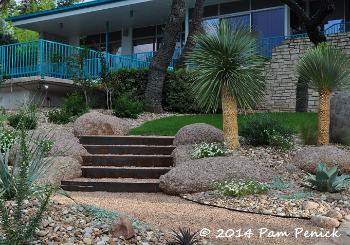 Mid-century house inspires Palm Springs-style garden in Austin | Digging