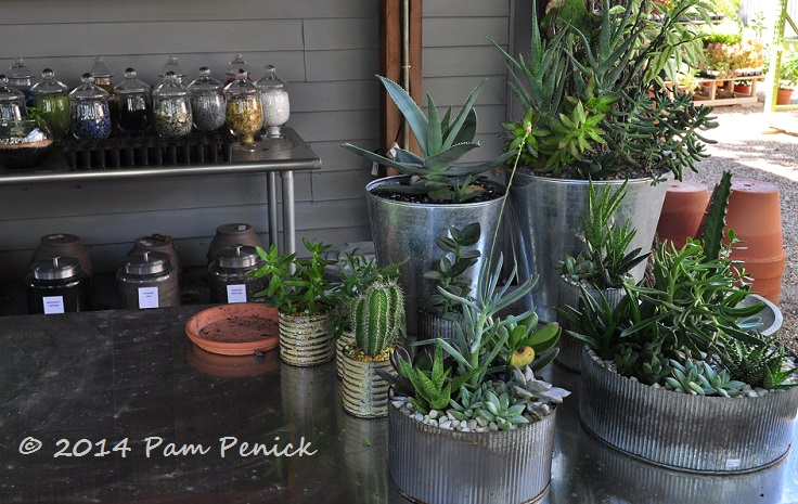 The First Was Redentau0027s Smaller Dallas Shop And Urban Nursery, Which  Carries Contemporary Pots And Accessories That Reminded Me Somewhat Of West  Coast ...