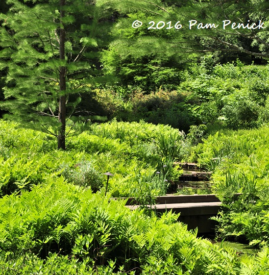 Meadow Views And Fantasy Treehouses At Longwood Gardens Digging