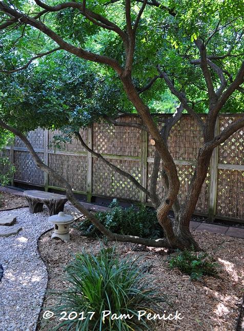 Cottage Garden Meets Zen Garden Inside Austin Gardens Tour 2017