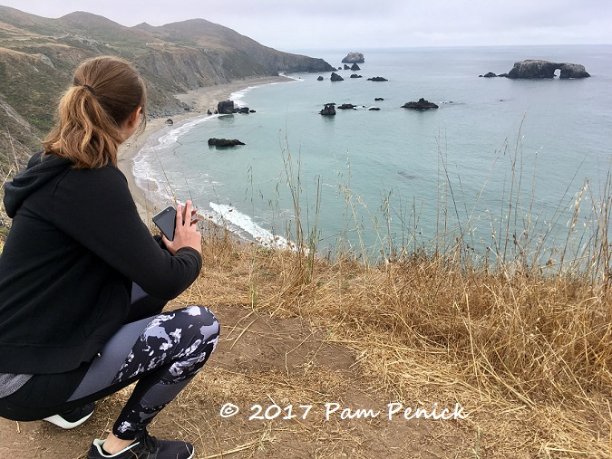 Highway 1 In Northern California A Road Trip Gives You The Freedom To Explore Along Way Make Detours Or Just Stop At An Overlook Enjoy