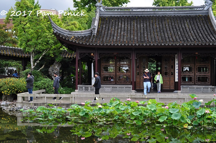 Lan Su Chinese Garden A Downtown Portland Oasis Digging