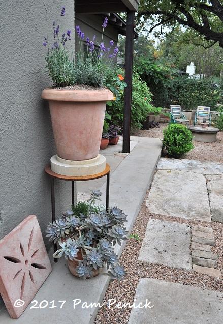 Garden Of Sprout Owner Jackson Broussard Austin Open Days