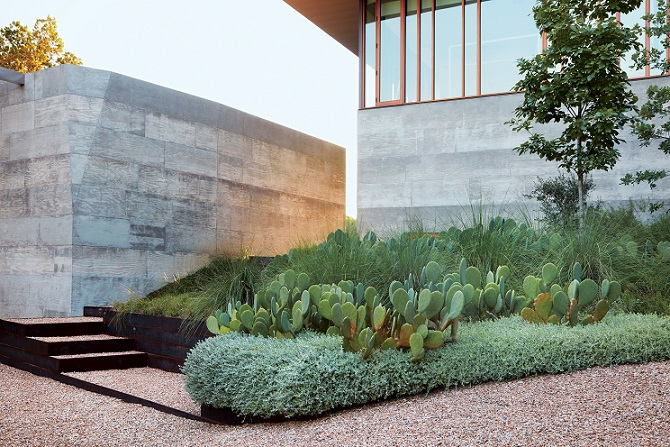 Book Review Dry Gardens High Style For Low Water Gardens Digging