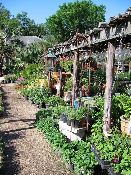 It S Support Your Independent Nursery Month Each Wednesday In October I M Posting About One Of My Favorite Garden Centers The Austin Area