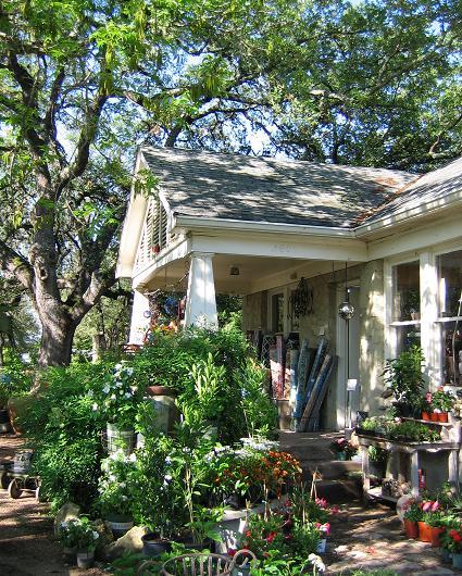 Austin Nurseries Giveaway Barton Springs Nursery