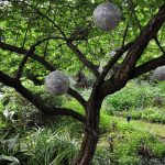 Disco balls hang from a tree in Diane and Tom Peace's garden in Lockhart, Texas