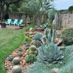 Agaves, cacti, and other succulents in the garden of Matt Shreves in Austin, Texas